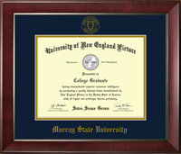 "11"" x 14"" Diploma Frame - Cherry Reverse w/Seal"
