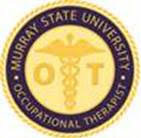 Occupational Therapy Pin